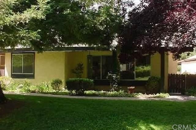 36184 Gingertree Trail, Yucaipa, CA 92399 (#EV21234840) :: The Houston Team   Compass