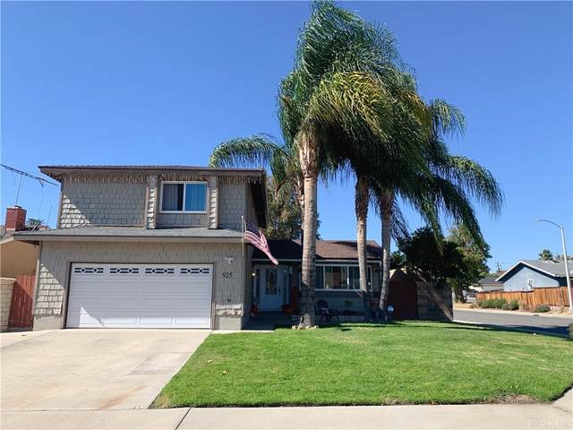 925 Dolly Drive, Lake Elsinore, CA 92530 (#SW21235018) :: Elevate Palm Springs