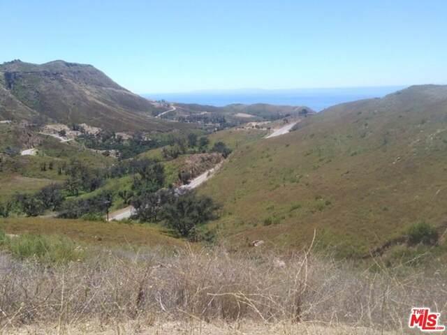 2580 Encinal Canyon Road, Malibu, CA 90265 (#21798726) :: Mint Real Estate