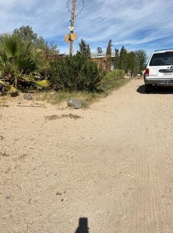 45146 Fairview Road, Newberry Springs, CA 92365 (#540428) :: Realty ONE Group Empire