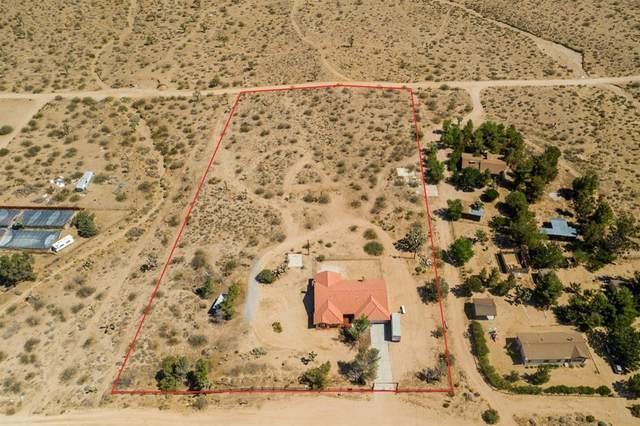 11550 Greasewood Lane, Phelan, CA 92371 (#540432) :: Blake Cory Home Selling Team