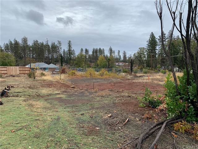1175 Bille Road, Paradise, CA 95969 (#PA21236832) :: Doherty Real Estate Group