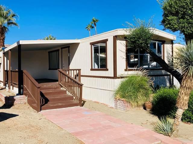 13 Ocotillo Lane, Palm Desert, CA 92260 (#219069542DA) :: Compass