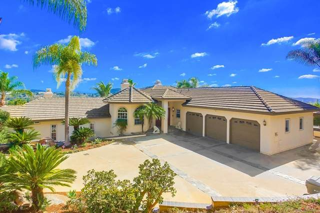 3059 Palm Hill Dr, Vista, CA 92084 (#210029907) :: Steele Canyon Realty
