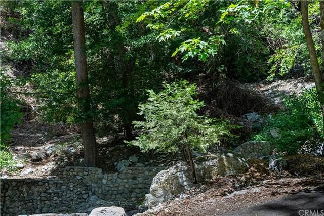 6669 Bear Canyon Road, Mount Baldy, CA 91759 (#CV20051053) :: Robyn Icenhower & Associates