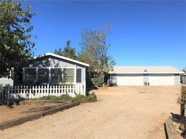 28915 W Avenue C6, Neenach, CA 93536 (#SR20247985) :: Jett Real Estate Group