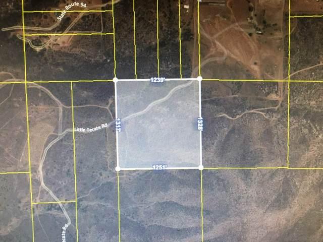 Highway 94, Dulzura, CA 91917 (#210004050) :: eXp Realty of California Inc.