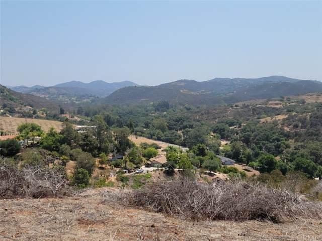 1390 Little Gopher Canyon Road, Bonsall, CA 92003 (#SW21065374) :: Zutila, Inc.
