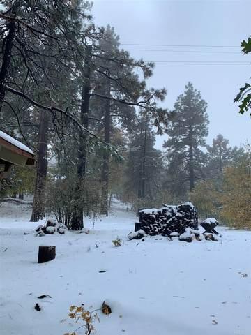 745 Boiling Springs Road, Mount Laguna, CA 91948 (#PTP2103960) :: Doherty Real Estate Group