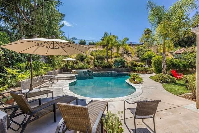 5955 Rio Valle Drive, Bonsall, CA 92003 (#NDP2107983) :: Powerhouse Real Estate