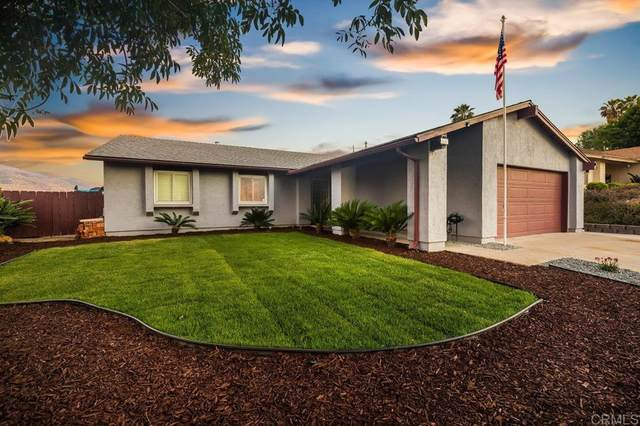 9635 San Diego Street, Spring Valley, CA 91977 (#PTP2105079) :: Realty ONE Group Empire