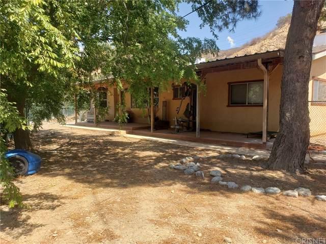 11964 Sierra Highway, Agua Dulce, CA 91390 (#SR21162937) :: Legacy 15 Real Estate Brokers