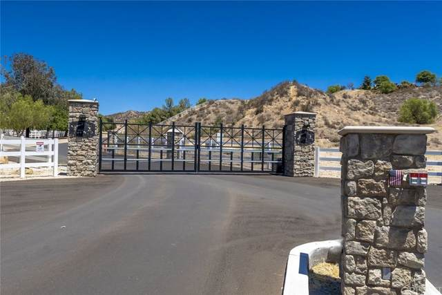30700 Romero Canyon Road, Castaic, CA 91384 (#SR21166465) :: Robyn Icenhower & Associates