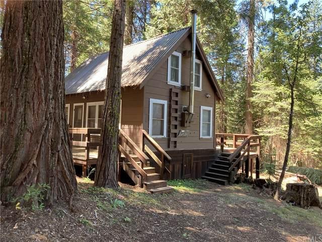 1226 Hwy 41, Fish Camp, CA 93623 (#FR21174053) :: Twiss Realty