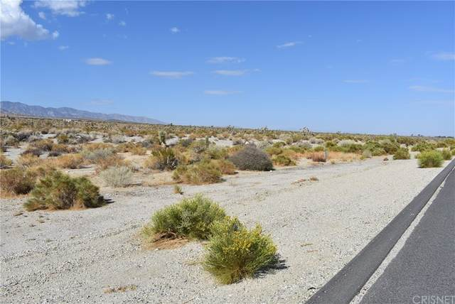 24000 Antelope Hwy & Vic X8, Llano, CA 93544 (#SR21187421) :: eXp Realty of California Inc.