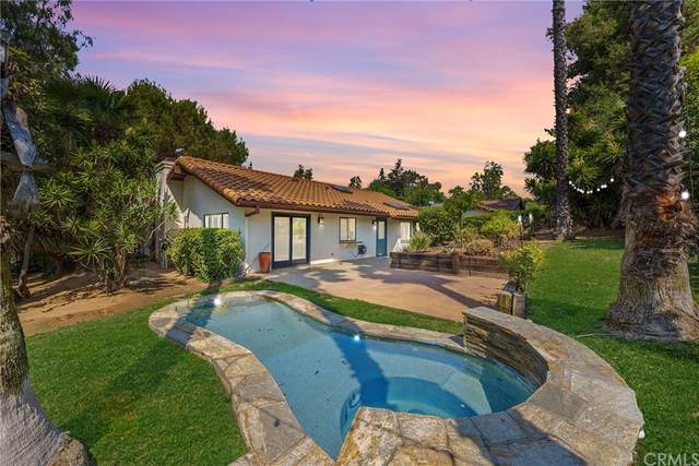720 Ronica Way, Fallbrook, CA 92028 (#SW21182243) :: The Ashley Cooper Team