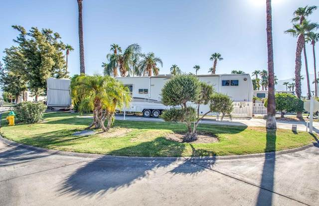 69411 Ramon Road, Cathedral City, CA 92234 (#219066701PS) :: Steele Canyon Realty