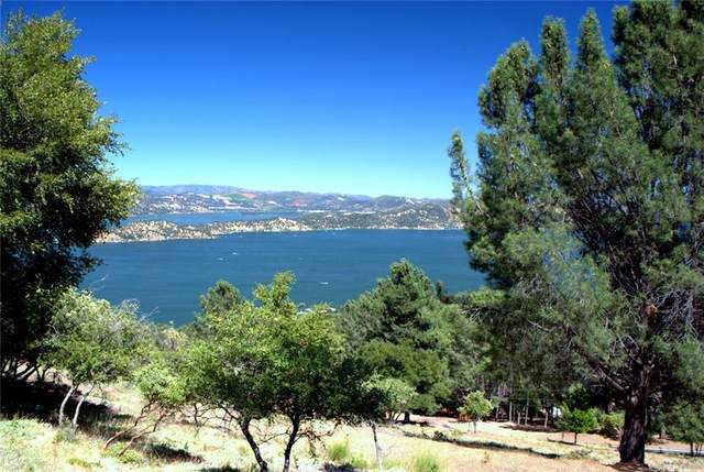 3461 Pine Terrace Dr, Kelseyville, CA 95451 (#LC21189884) :: Jett Real Estate Group