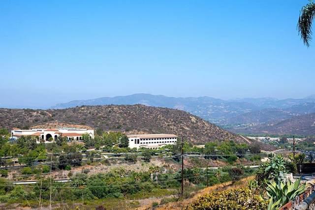 10926 Avenida Roberta, Spring Valley, CA 91978 (#NDP2110083) :: Latrice Deluna Homes