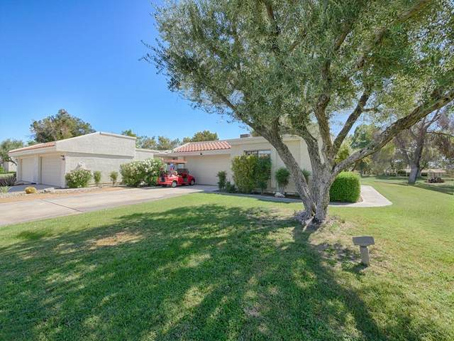 34832 Calle Sestao, Cathedral City, CA 92234 (#219067173PS) :: Jett Real Estate Group