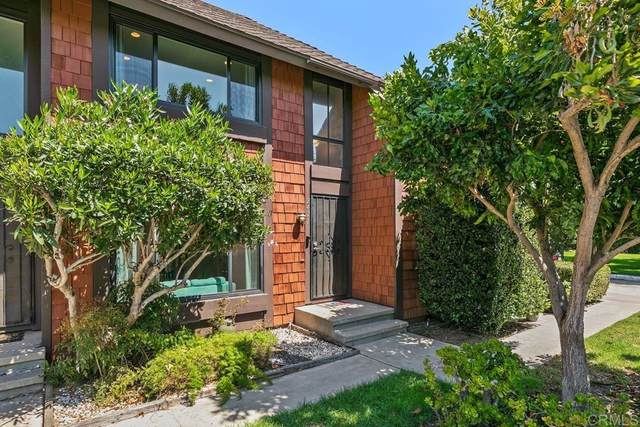 2471 Caminito Ocean, Cardiff By The Sea, CA 92007 (#NDP2110473) :: The Houston Team | Compass