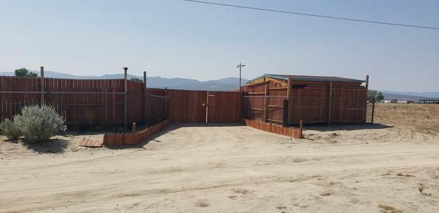 38295 Darry Lane, Anza, CA 92539 (#219067566DA) :: Swack Real Estate Group | Keller Williams Realty Central Coast