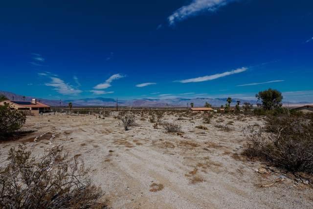 Pecos Drive, Borrego Springs, CA 92004 (#210026360) :: Zen Ziejewski and Team