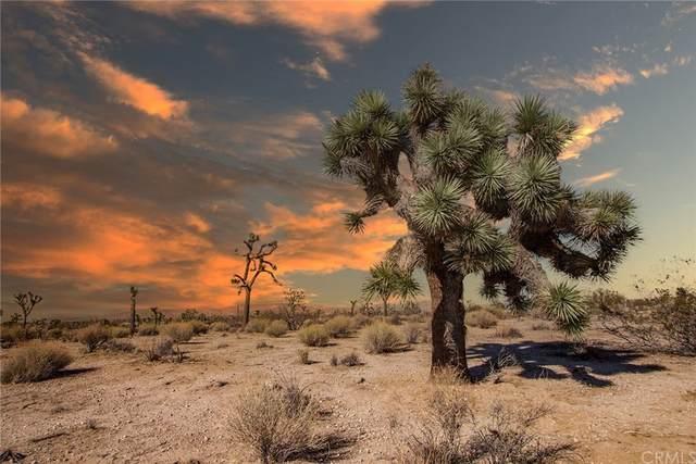 4444 Inez, Yucca Valley, CA 92284 (MLS #JT21206851) :: ERA CARLILE Realty Group