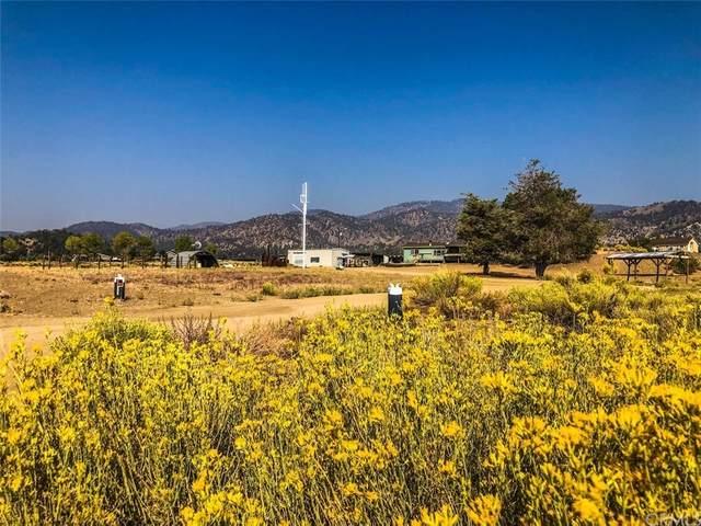 16299 E Mountain Lilac, Frazier Park, CA 93225 (#PI21200750) :: Robyn Icenhower & Associates