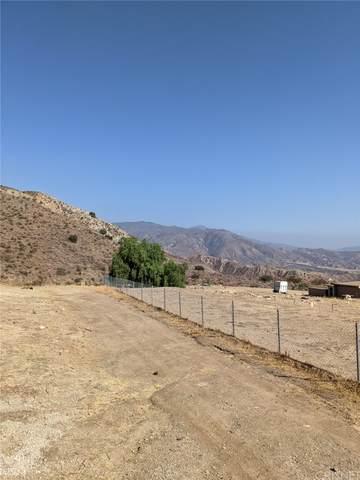11119 Indian Mesa Drive, Sylmar, CA 91342 (#SR21207519) :: Corcoran Global Living