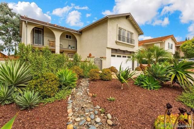 1632 Olmeda St, Encinitas, CA 92024 (#210026878) :: Blake Cory Home Selling Team