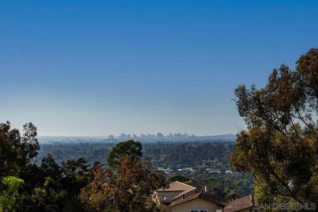 359 Surrey Dr, Bonita, CA 91902 (#210026911) :: Jett Real Estate Group