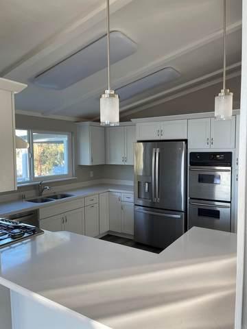 786 Great Sandy Trail, Julian, CA 92036 (#PTP2106735) :: Jett Real Estate Group
