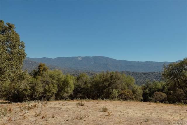 4860 Leonard Road, Mariposa, CA 95338 (#MP21212395) :: Compass