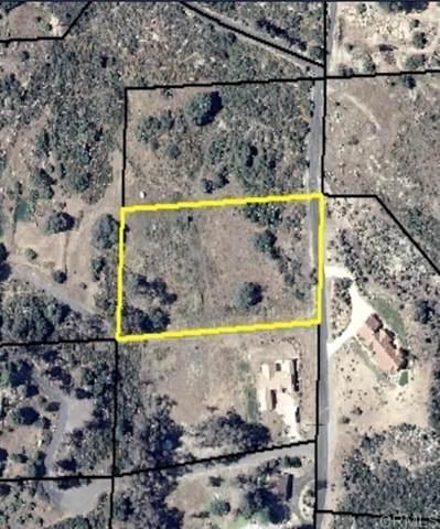 79 Via Piedra, Valley Center, CA 92082 (#NDP2111301) :: Compass
