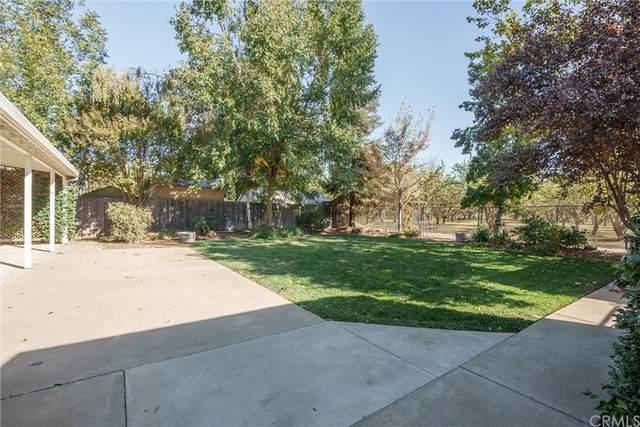 9234 Stanford Lane, Durham, CA 95938 (#SN21225291) :: The Laffins Real Estate Team