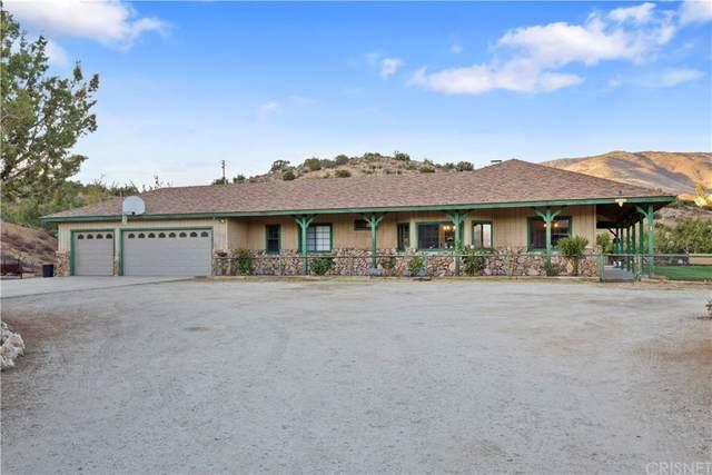 6535 Juniper Crest Road, Agua Dulce, CA 91390 (#SR21230382) :: Compass