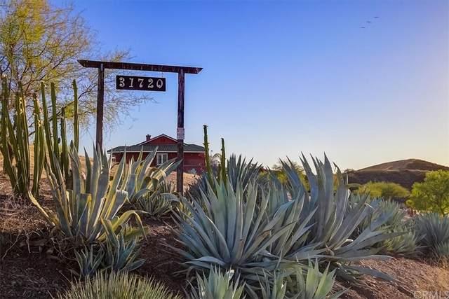 31720 Diamond View Lane, Agua Dulce, CA 91390 (#BB21212871) :: Compass