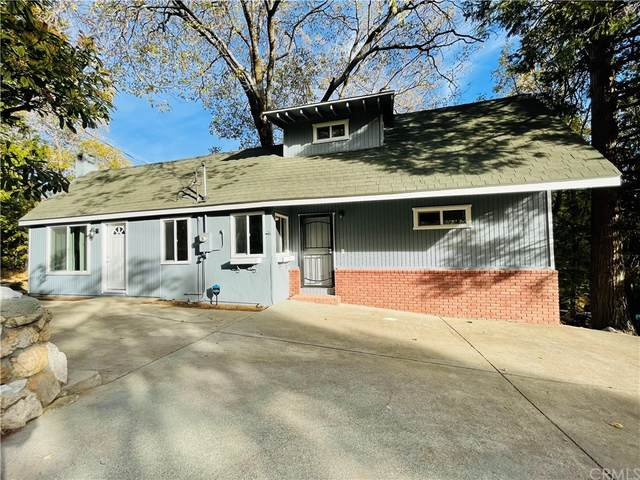 29319 Lake View Drive, Cedar Glen, CA 92321 (#IV21234588) :: RE/MAX Empire Properties