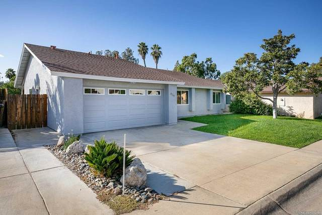 839 Willow Tree Ln, Fallbrook, CA 92028 (#210029684) :: The M&M Team Realty