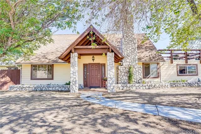 6878 Soledad Canyon Road, Acton, CA 93510 (#SR21151549) :: Corcoran Global Living