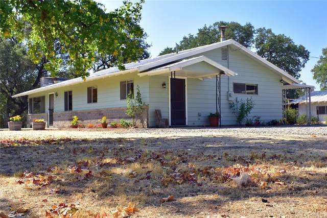 6539 6539 A State Highway 49 N, Mariposa, CA 95338 (#MP21191012) :: Compass