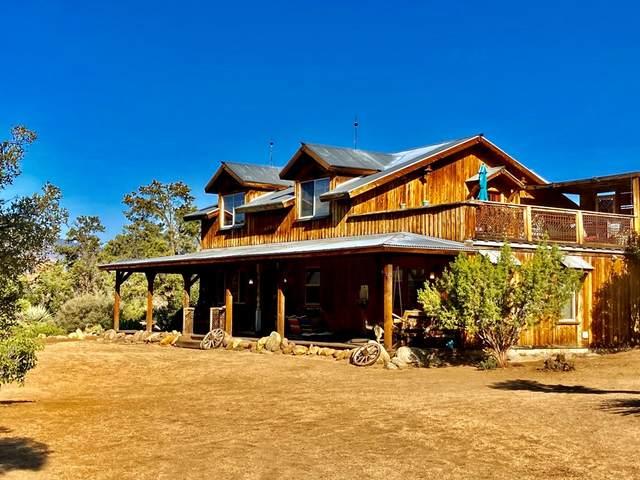 63350 Pinyon Drive, Mountain Center, CA 92561 (#219067104DA) :: Team Tami