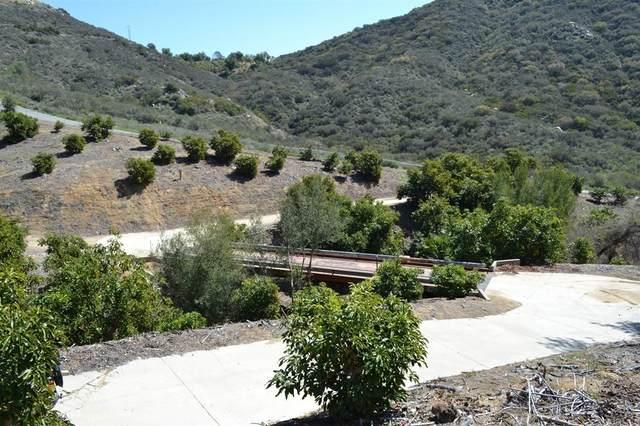 0 W Sandia Creek, Fallbrook, CA 92028 (#NDP2111430) :: Necol Realty Group