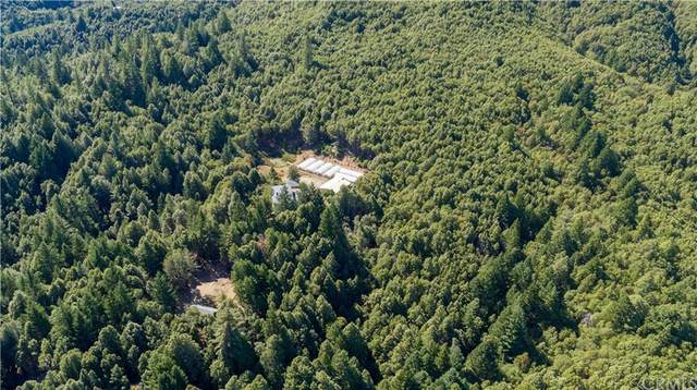 3720 Branscomb Road, Laytonville, CA 95454 (#LC21208799) :: Team Forss Realty Group