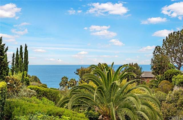 1208 Calle Toledo, San Clemente, CA 92672 (#OC21144744) :: Blake Cory Home Selling Team