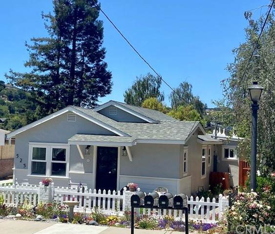 525 Le Point Street, Arroyo Grande, CA 93420 (#SC21114605) :: Wahba Group Real Estate | Keller Williams Irvine