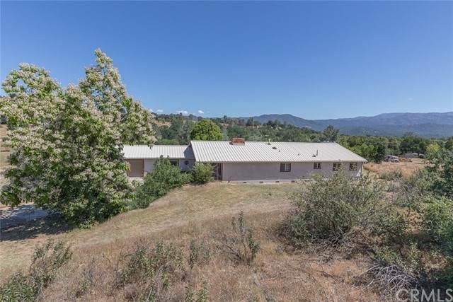 4904 Ashworth Road, Mariposa, CA 95338 (#MP21110594) :: Twiss Realty