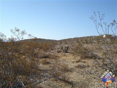 59928302 Border Road - Photo 1