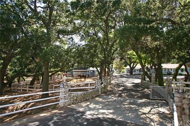19741 Live Oak Canyon Road, Trabuco Canyon, CA 92679 (#OC16121695) :: RE/MAX Estate Properties